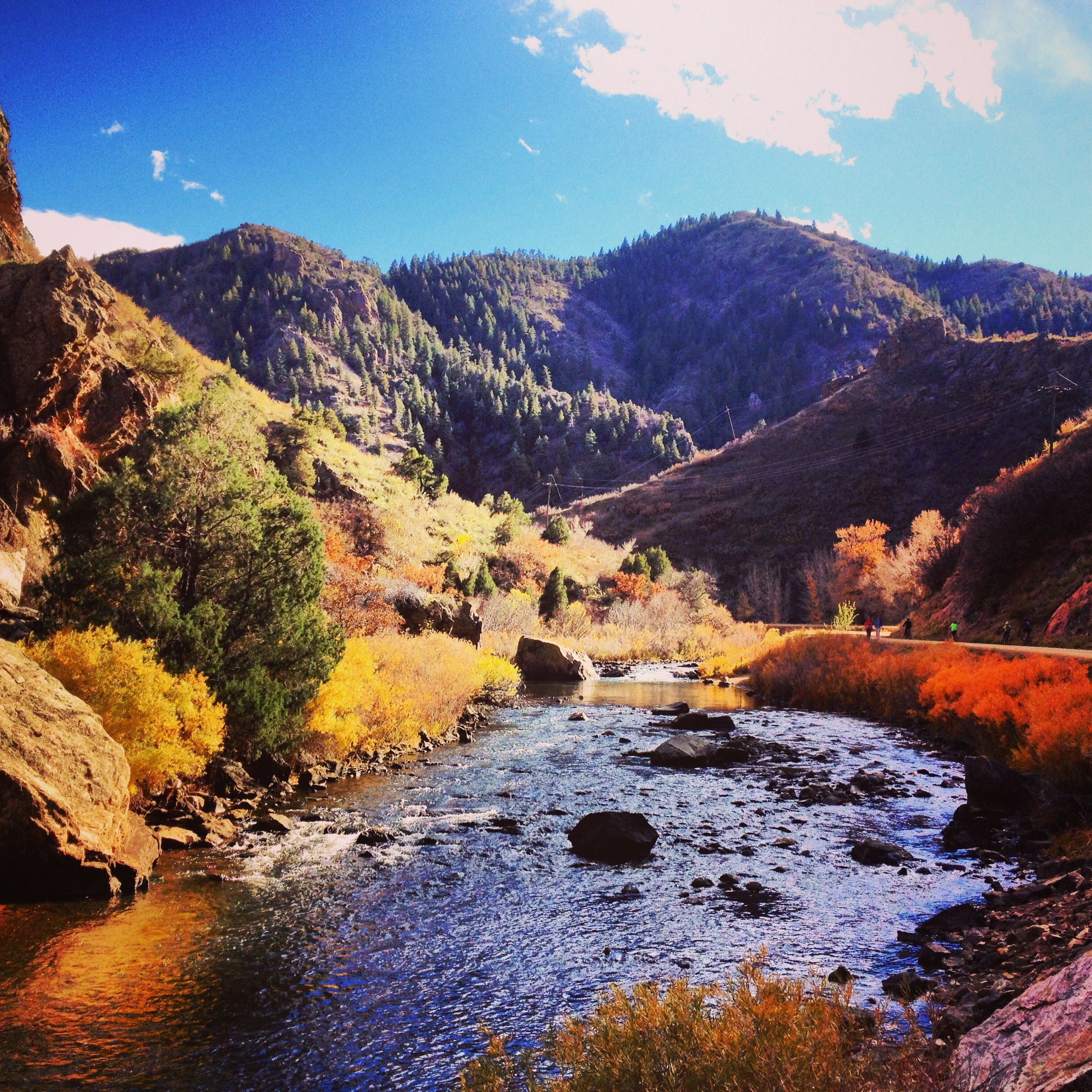 waterton canyon colorado fishing report