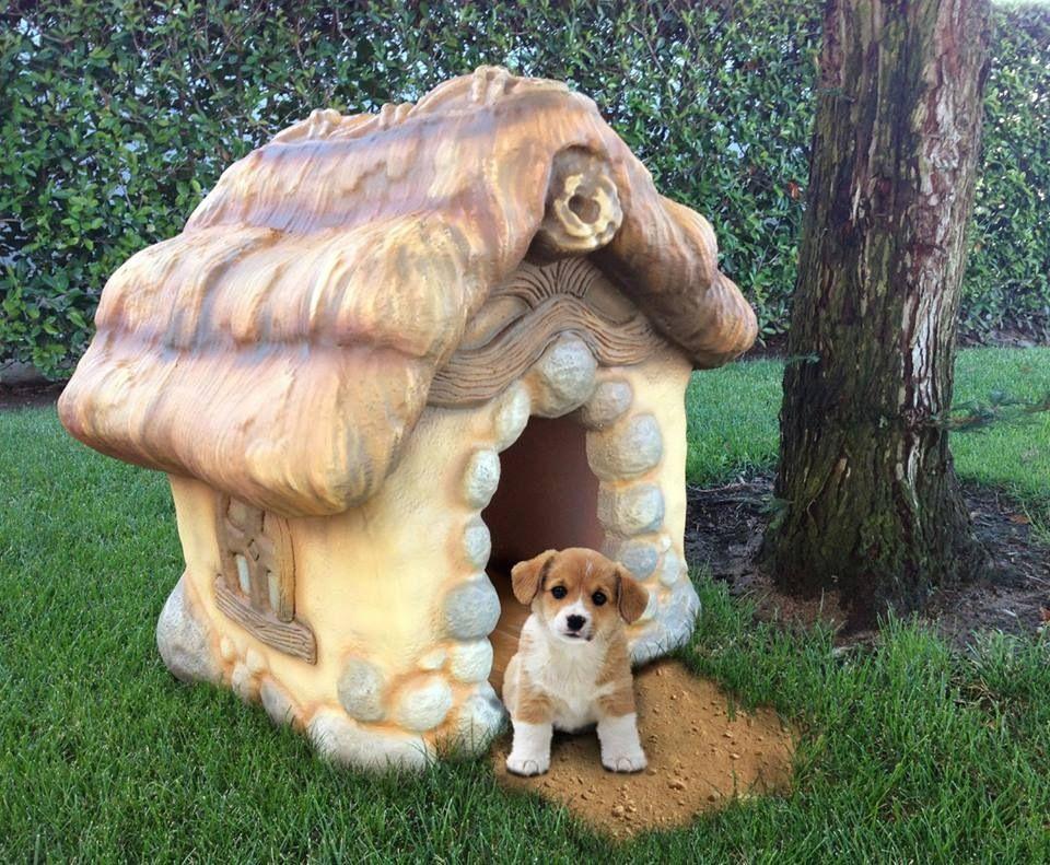 Cute dog house cool stuffs pinterest