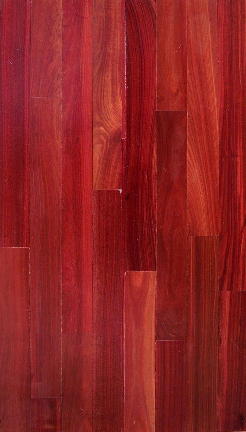Bloodwood our exotic hardwood flooring pinterest for Exotic hardwood flooring