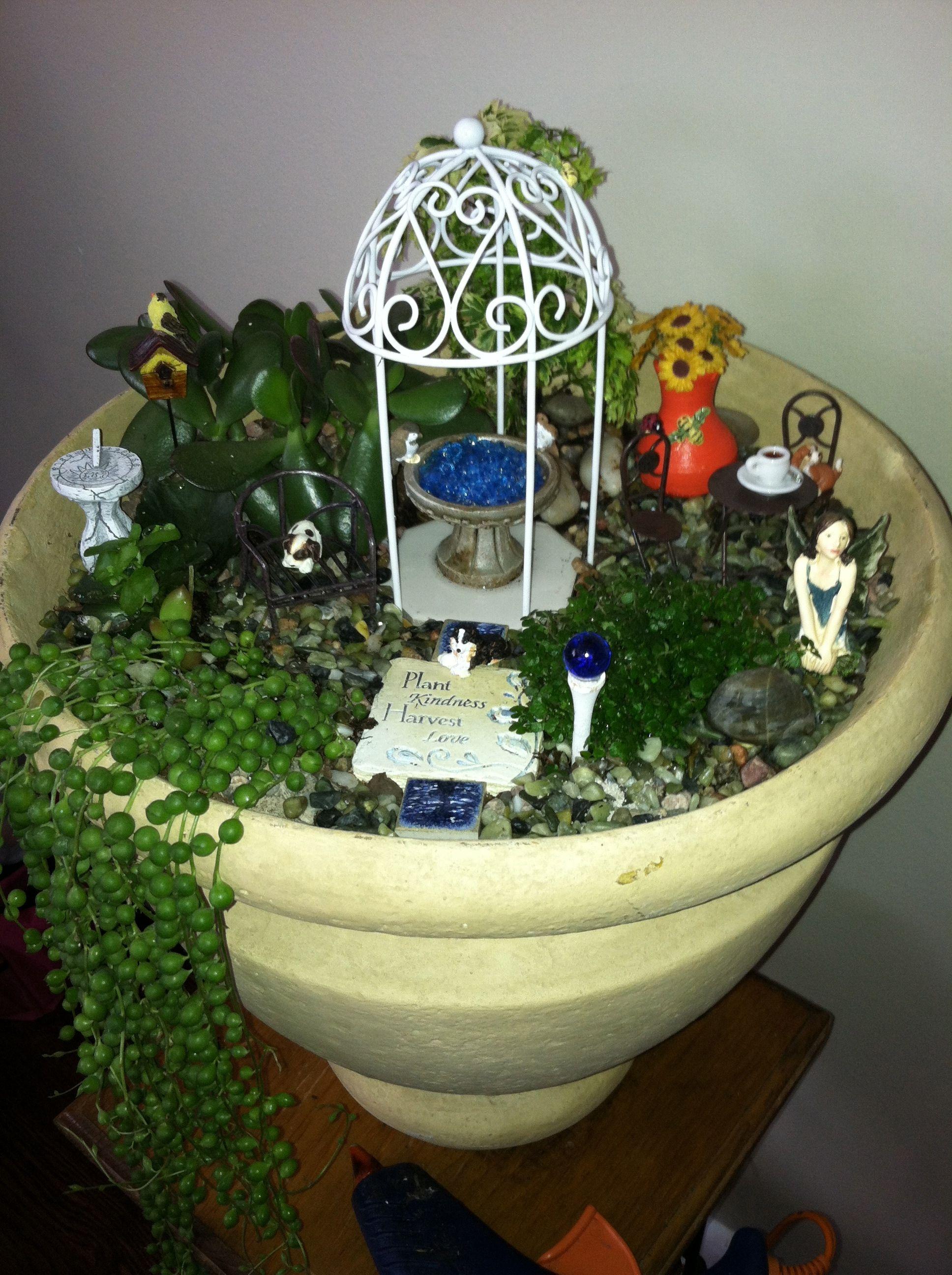 Desain Mini Garden Indoor : Indoor Mini Garden  Gardening/Fairy Gardens  Pinterest