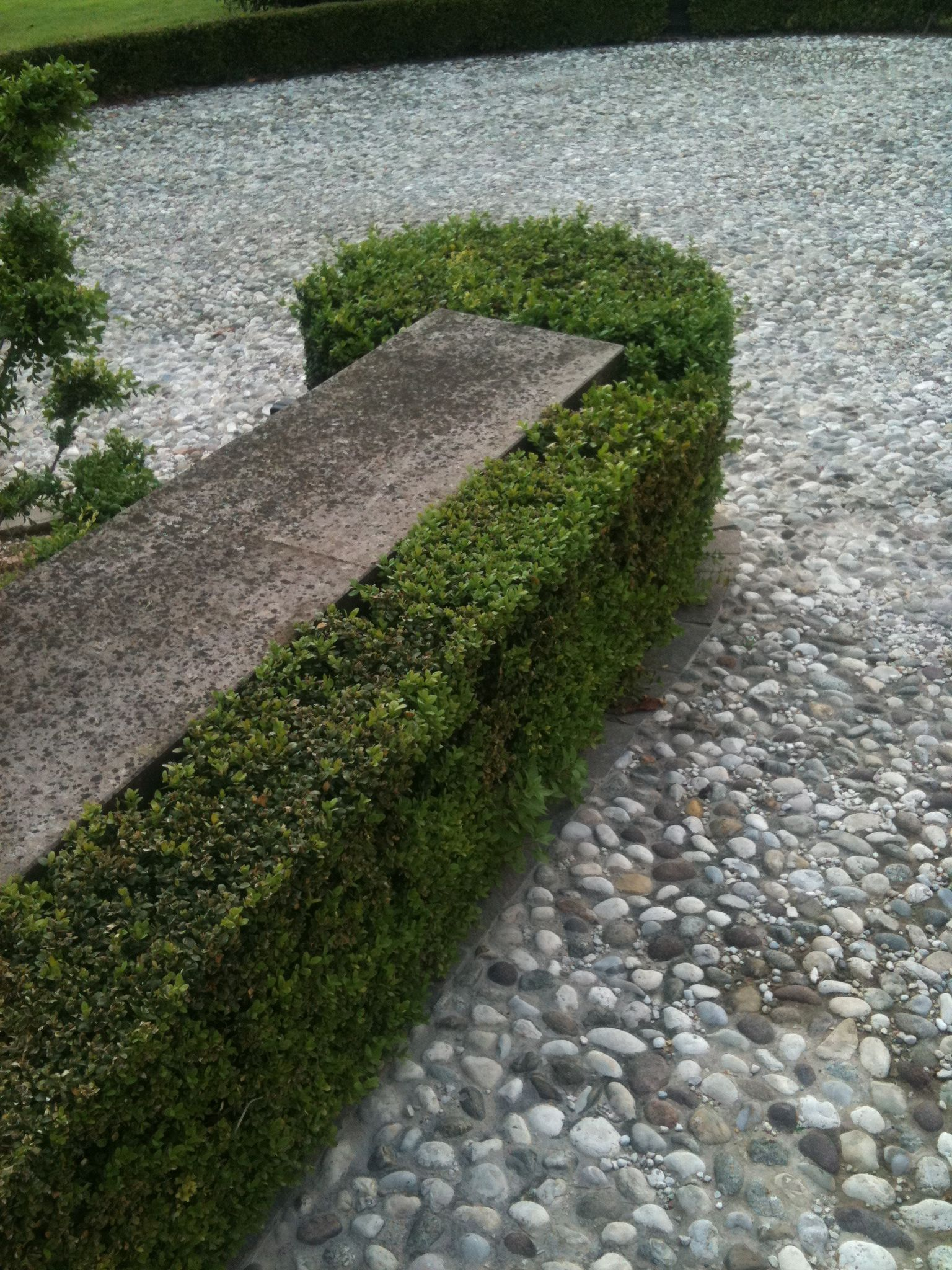 Crushed gravel, Boxwood hedge and Hedges on Pinterest
