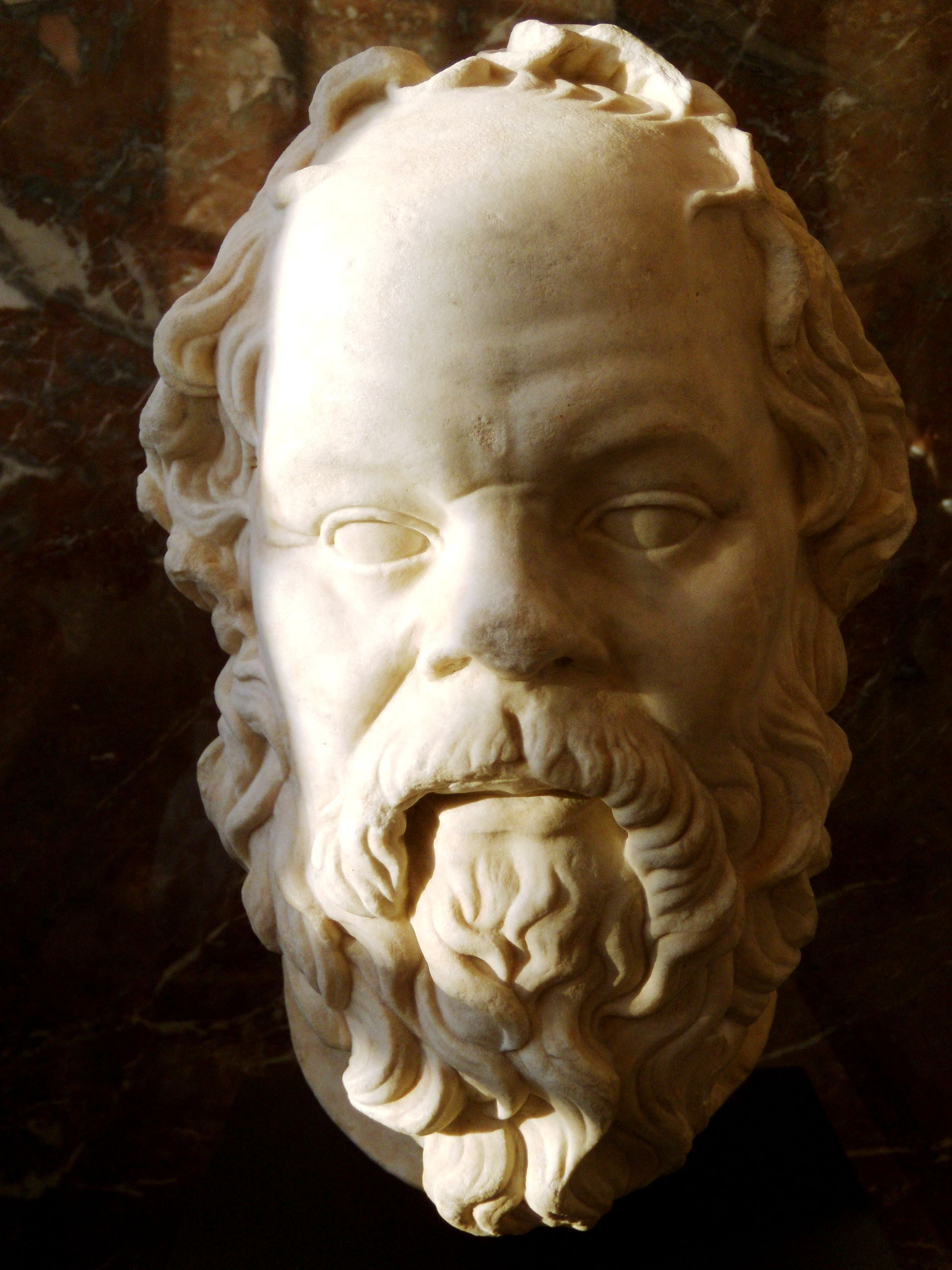 Essays On Socrates