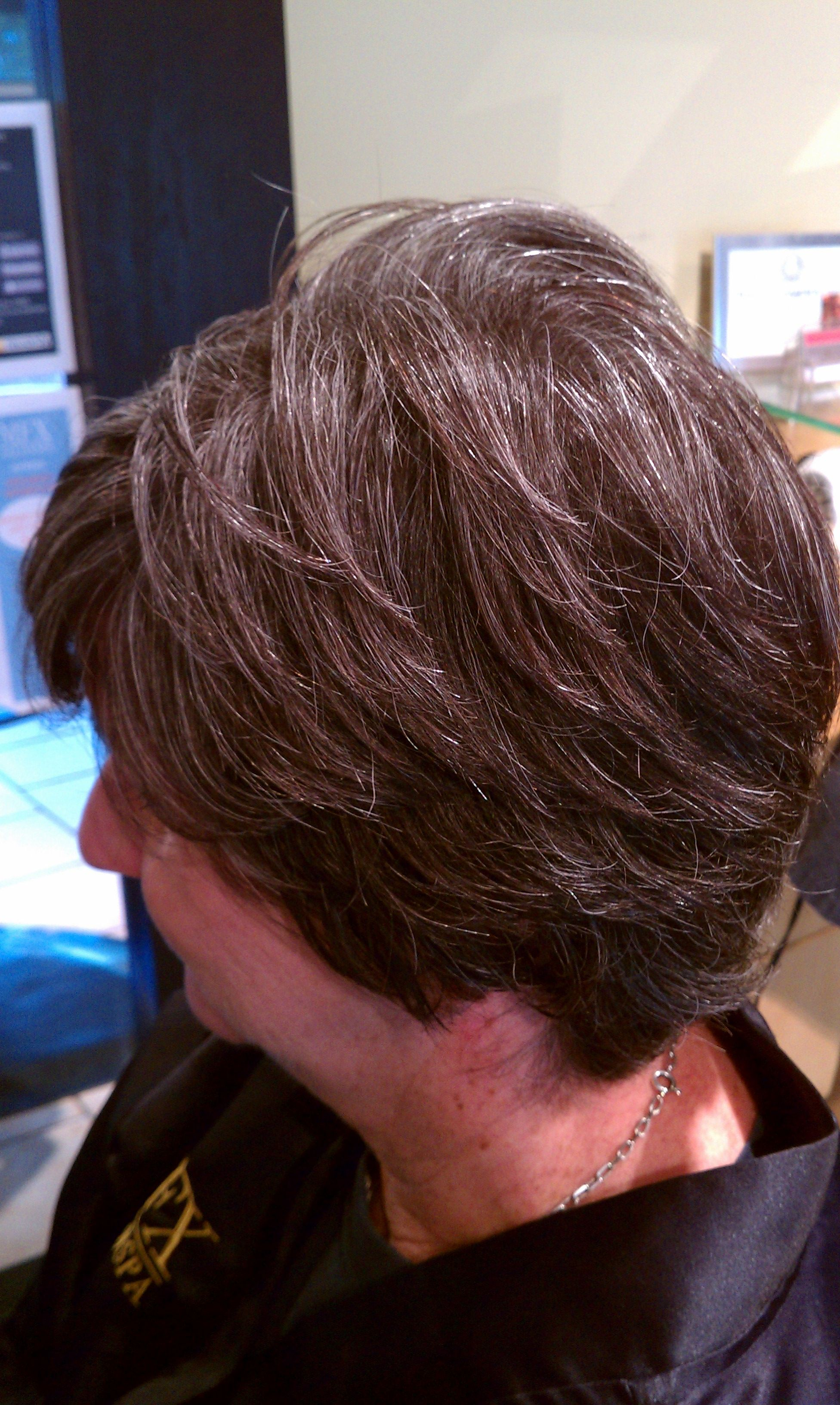 Blending Gray Hair With Highlights Hairstylegalleries Com