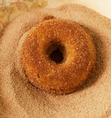 Plain-cake doughnut | Time to Make the Donuts | Pinterest