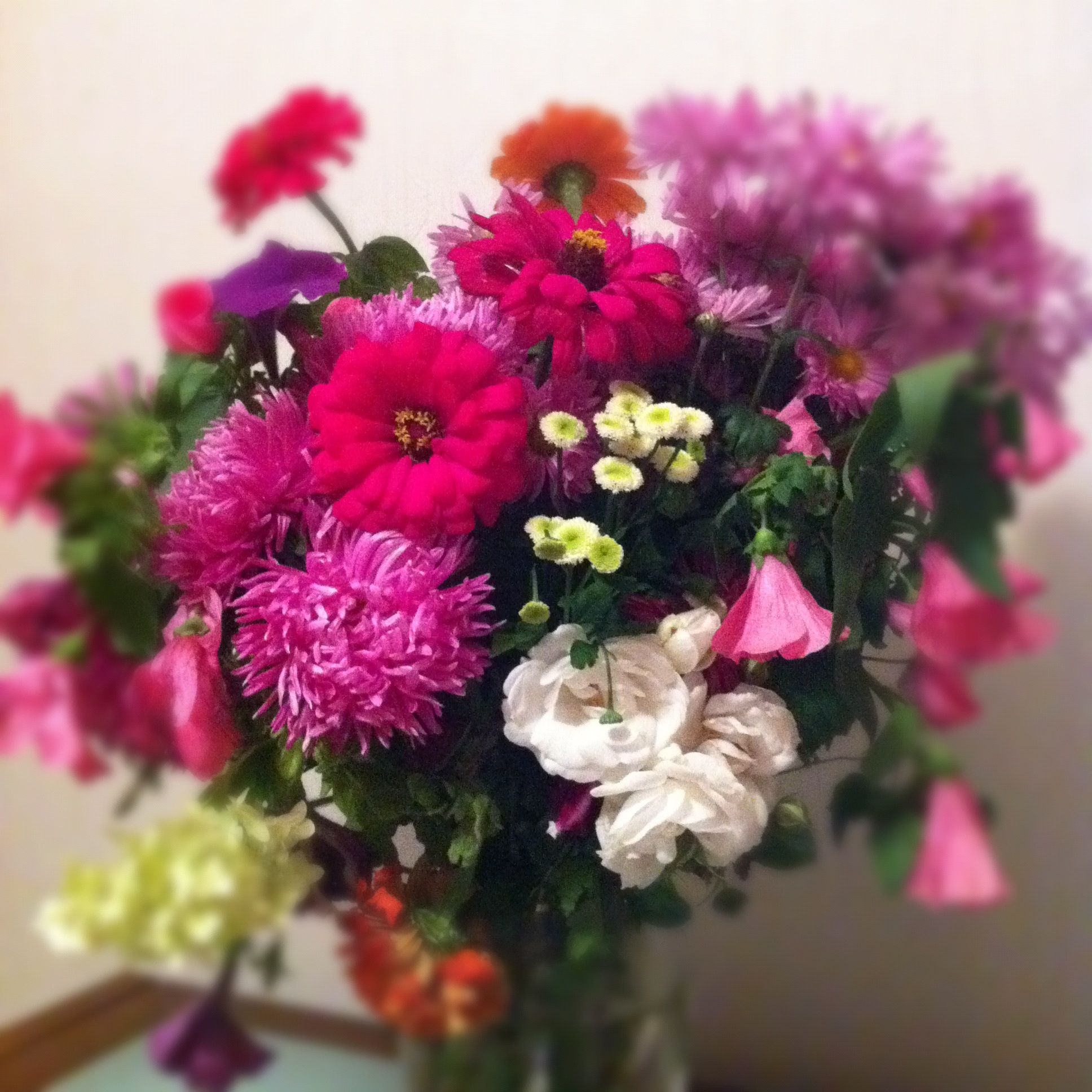 Мои цветы дача flowers bouquets pinterest