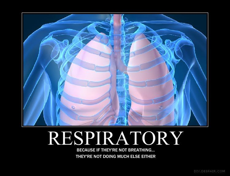 What does a Respiratory Therapist do?