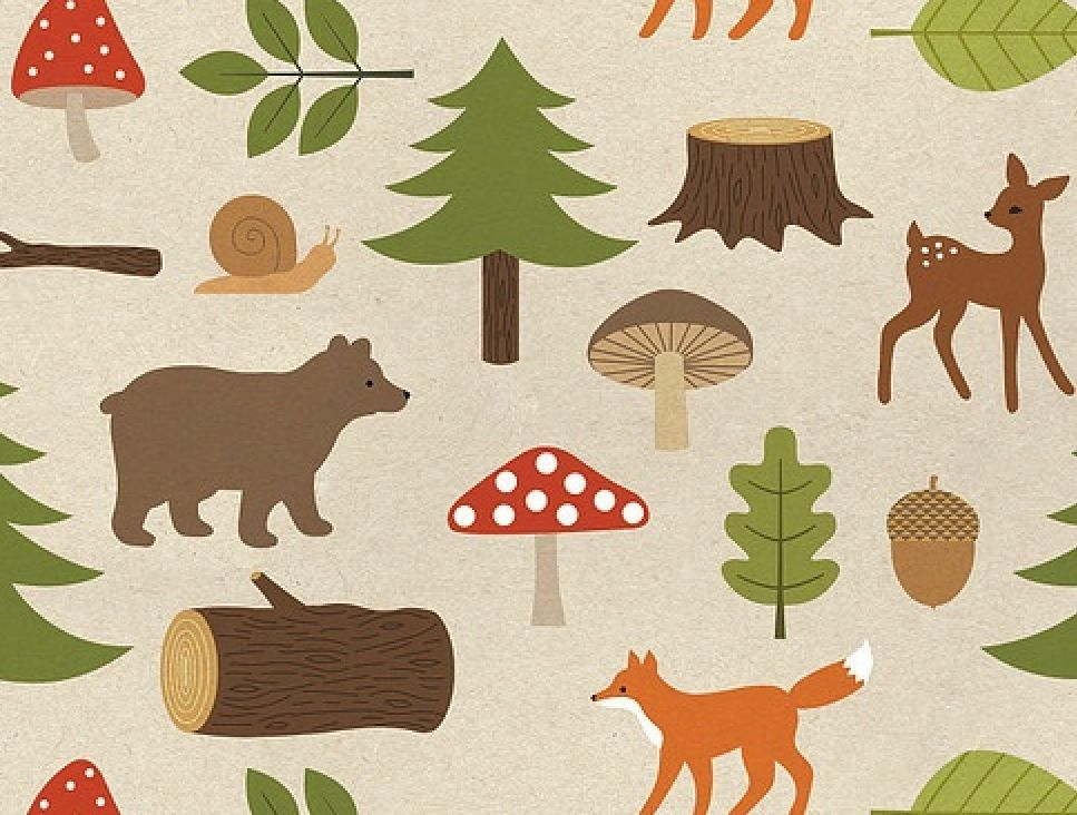 Woodland fabric baby boy pinterest for Baby themed fabric