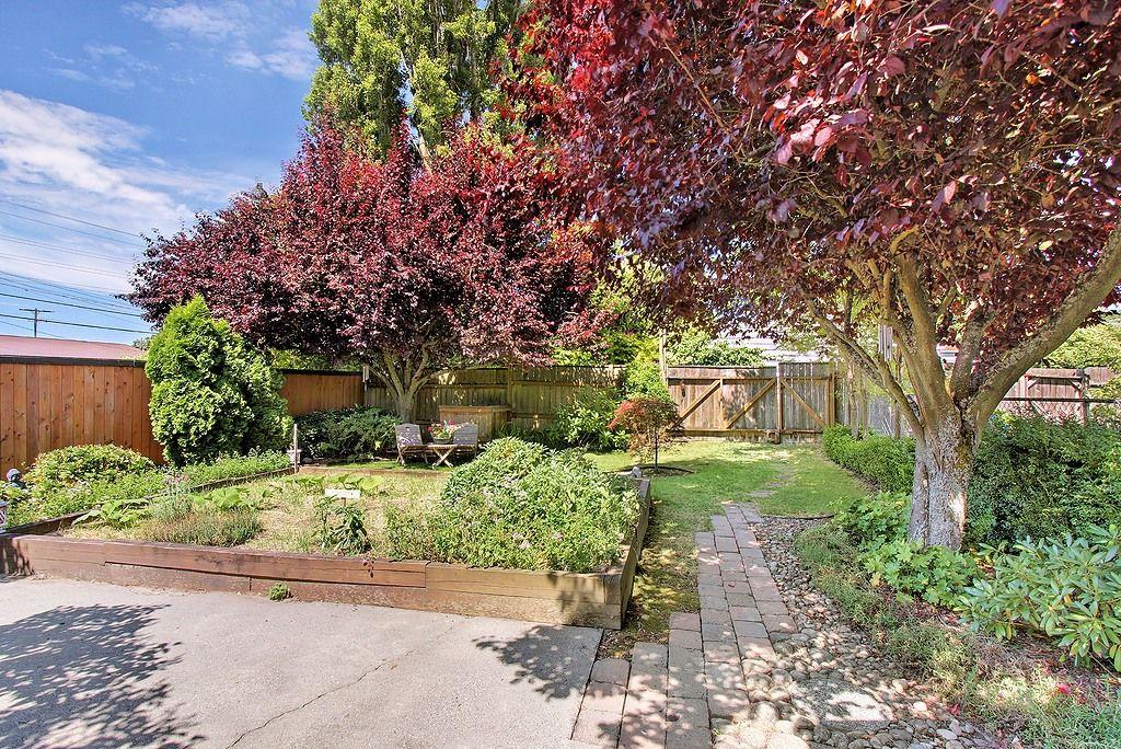 dream backyard my garden pinterest