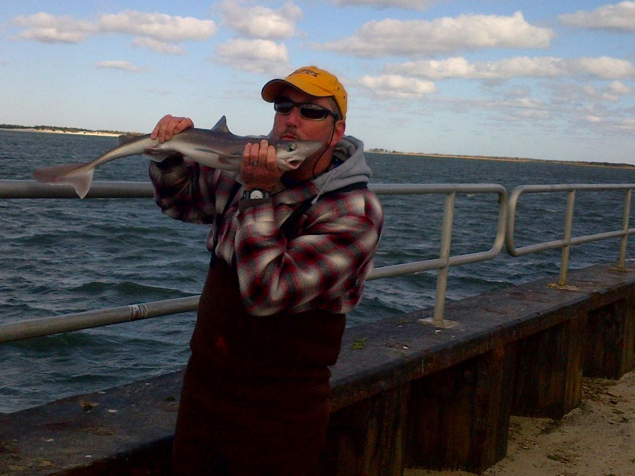 Shark fishing rod gun club pinterest for Shark fishing rod