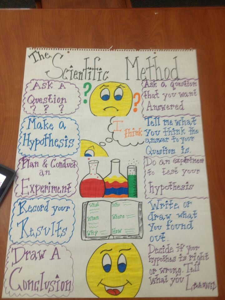 Scientific Method | Charts and bulletin boards | Pinterest