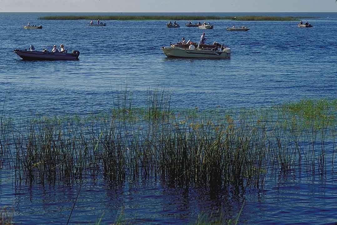 Lake Okeechobee Fishing Lake Recreation Pinterest