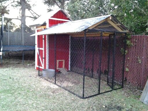 Our homemade chicken coop chickens pinterest for Homemade chicken house