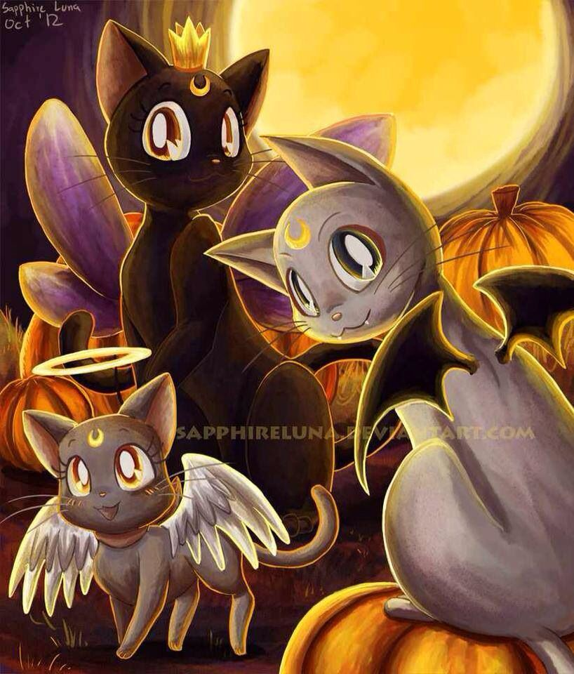 sailor moon halloween costume amazon