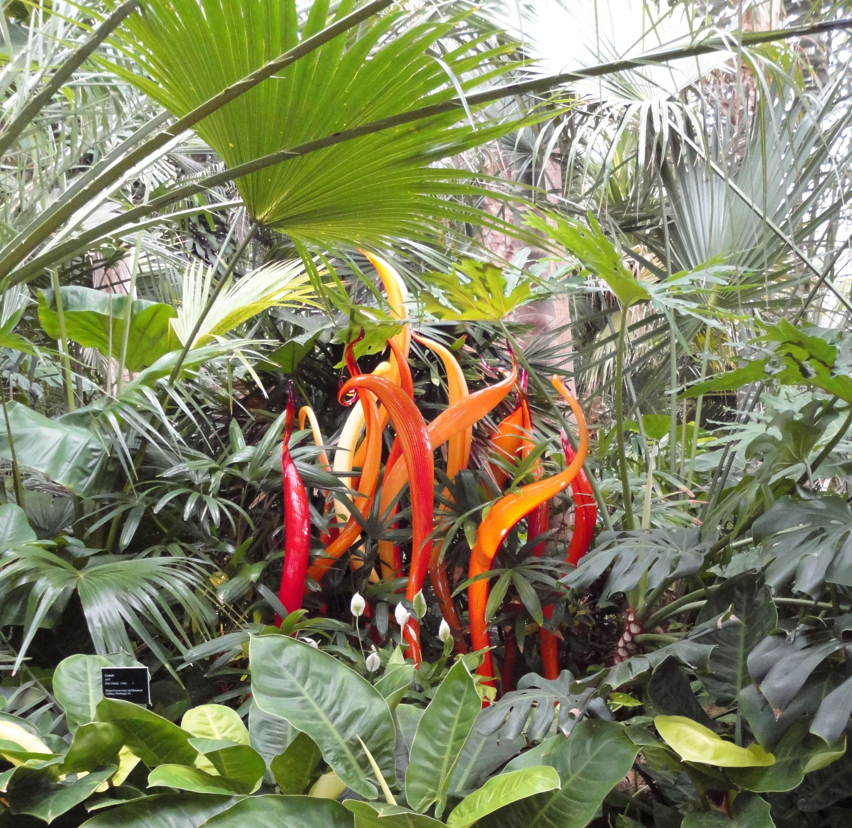 Pittsburgh Botanical Gardens Places I 39 Ve Been Pinterest
