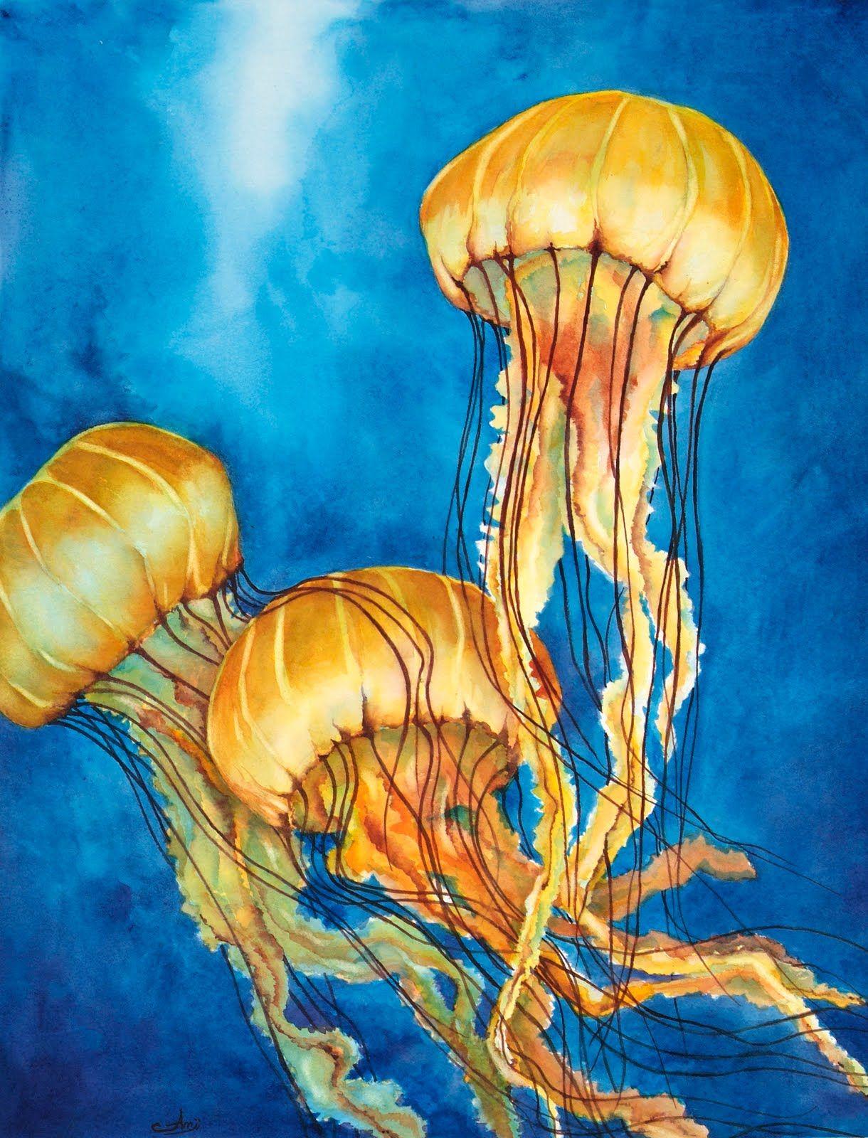 Watercolor jellyfish | paintings | Pinterest