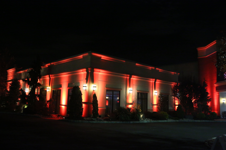Custom exterior up lighting amber custom up lighting for Exterior uplighting