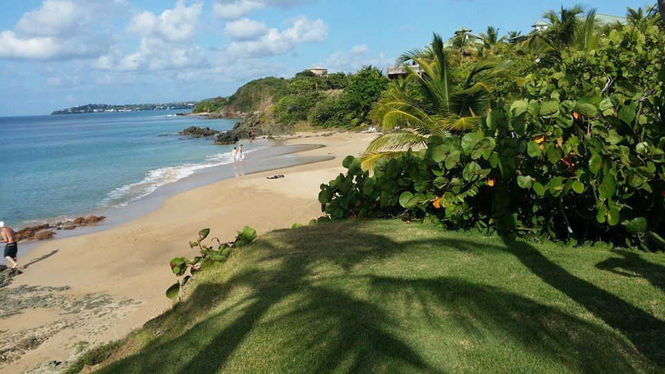 W Vieques Hotel Being A Puertorrican Is Pinterest