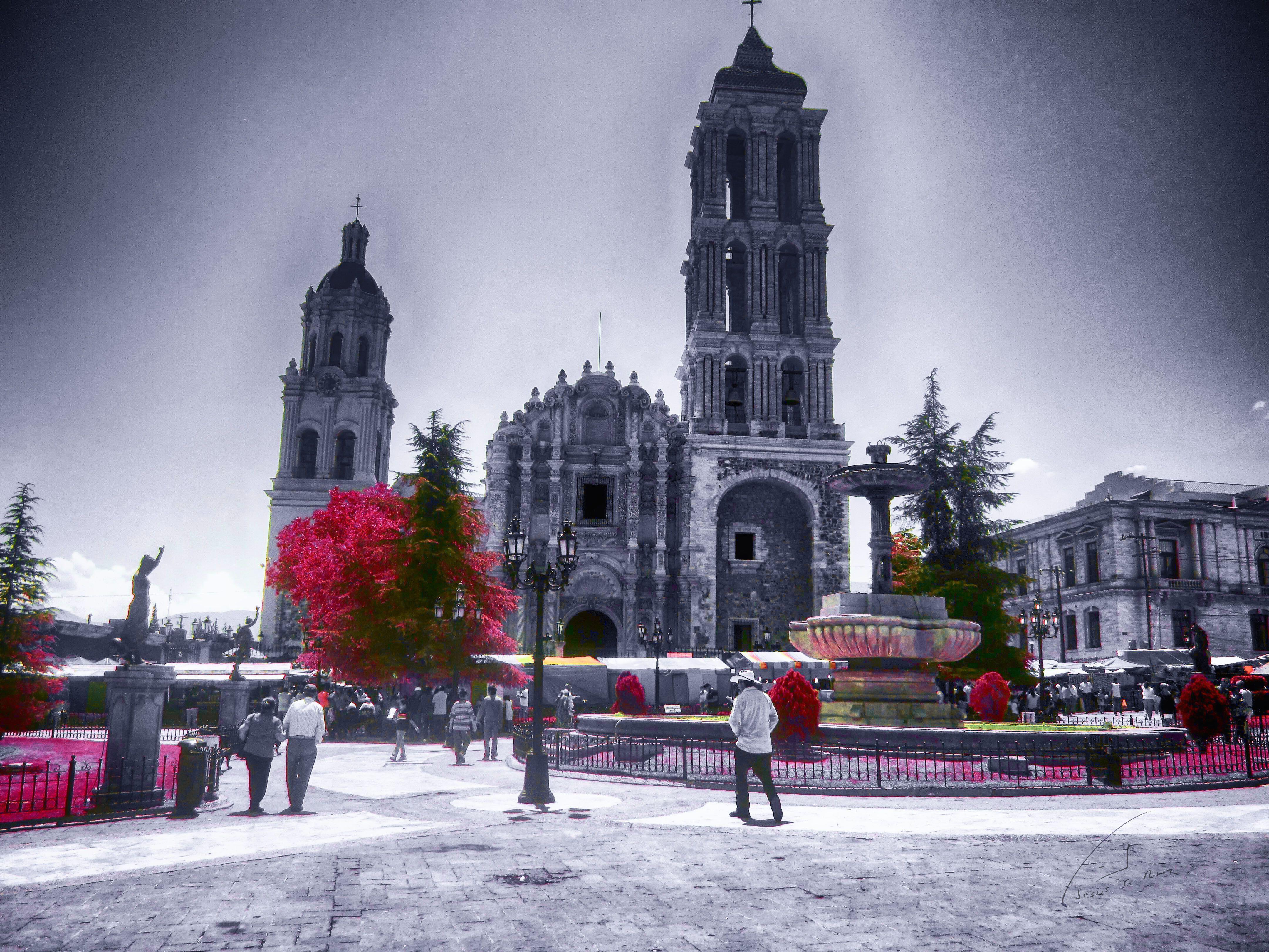 Saltillo de Zaragoza | Saltillo Coahuila, México. | Pinterest