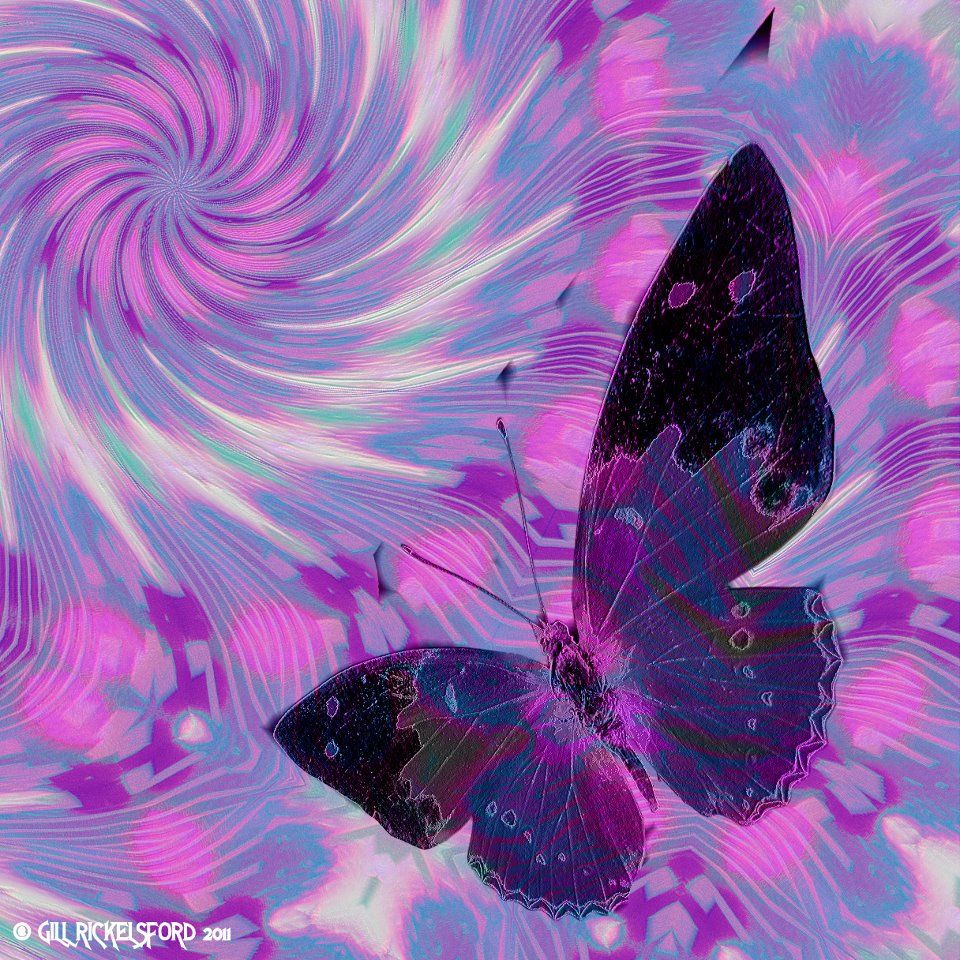 Image result for psychedelic butterfly