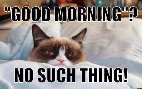 """Good Morning""? No Such Thing... 
