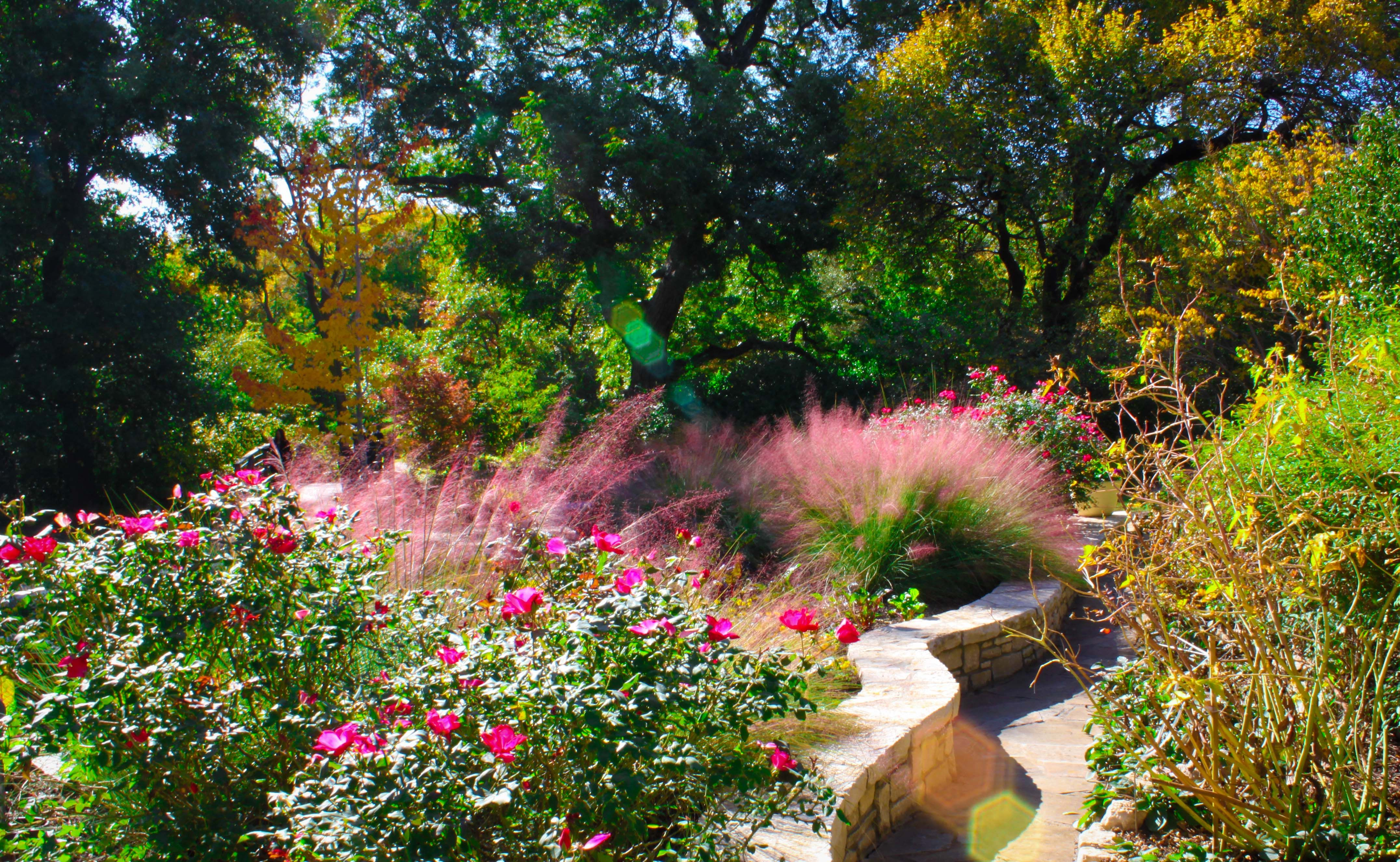 nice flower garden gardens flower pots pinterest