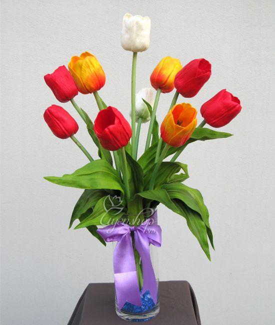 Hoa Tulip thơm (560k)