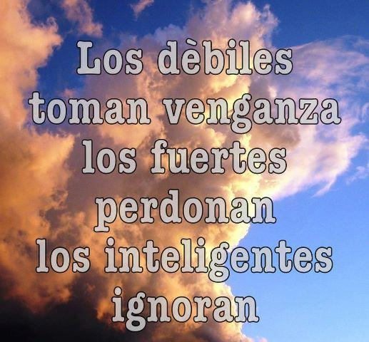 frases de perd n spanish inspirational quotes pinterest