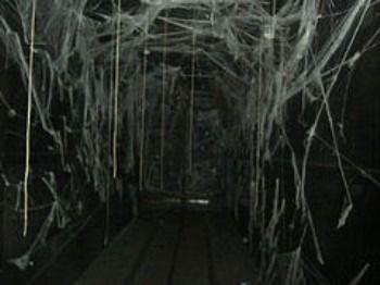 Community hall haunted house ideas shadow world pinterest for Haunted house hallway ideas