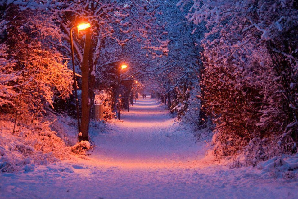 Beautiful Snowy Night