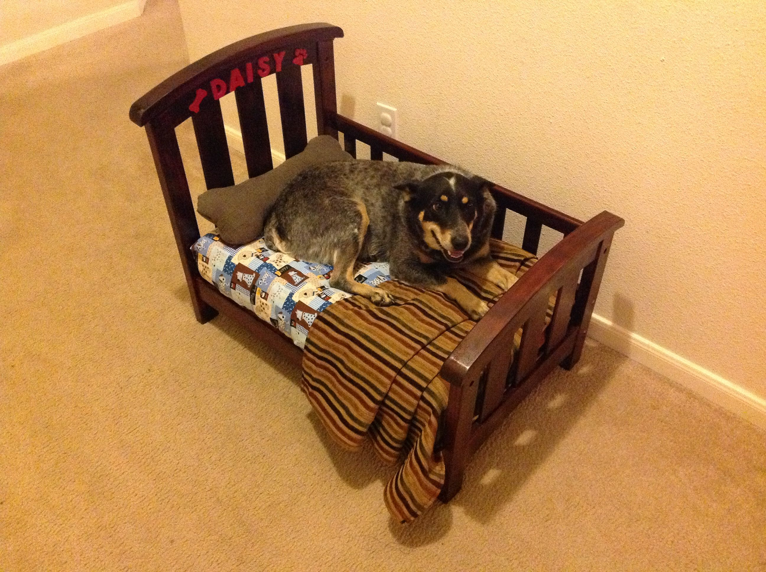 daisy 39 s dog bed made out of baby crib dog bed pinterest. Black Bedroom Furniture Sets. Home Design Ideas