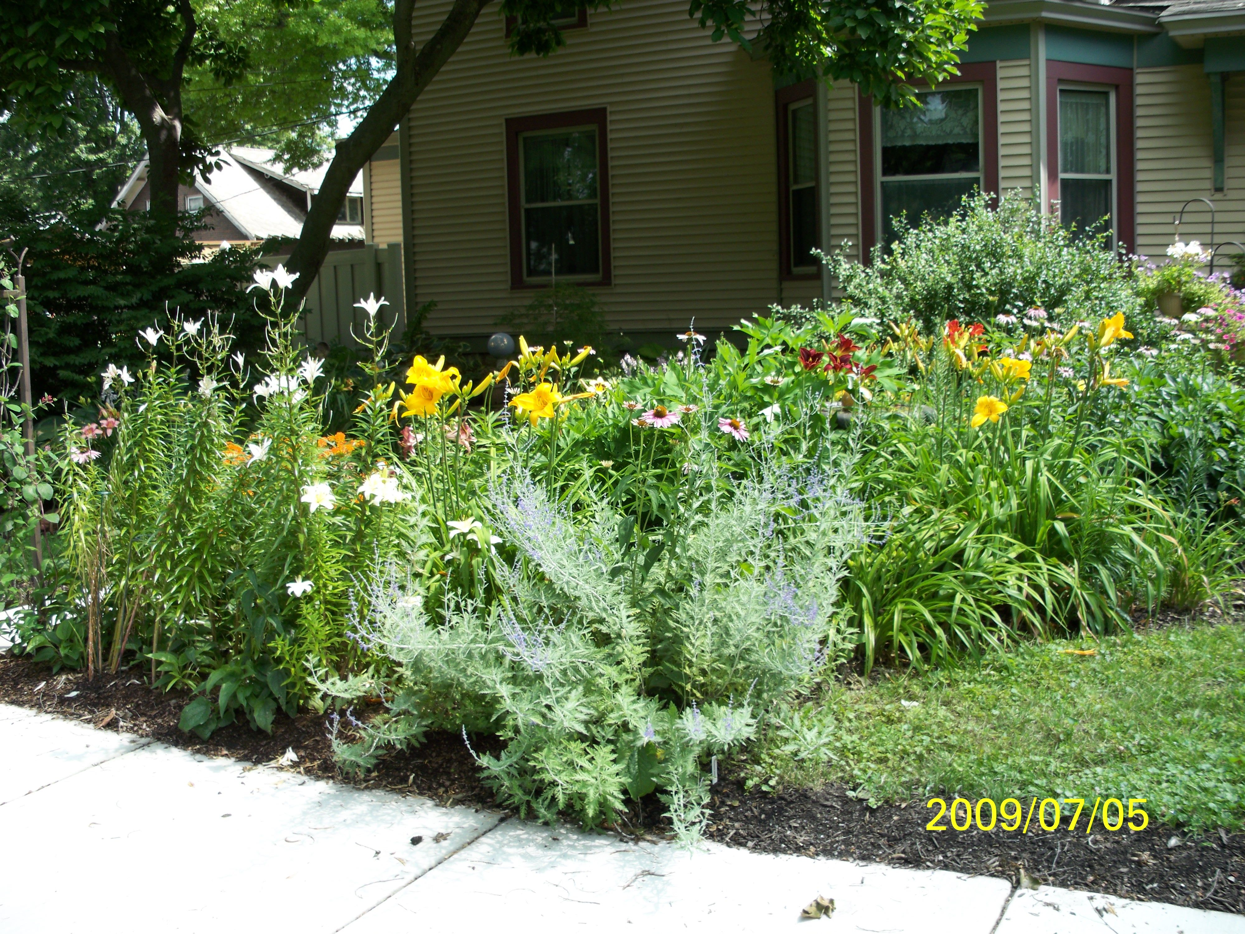 Top 28 perennial bed 4 easy care flower bed ideas for Easy maintenance flower beds