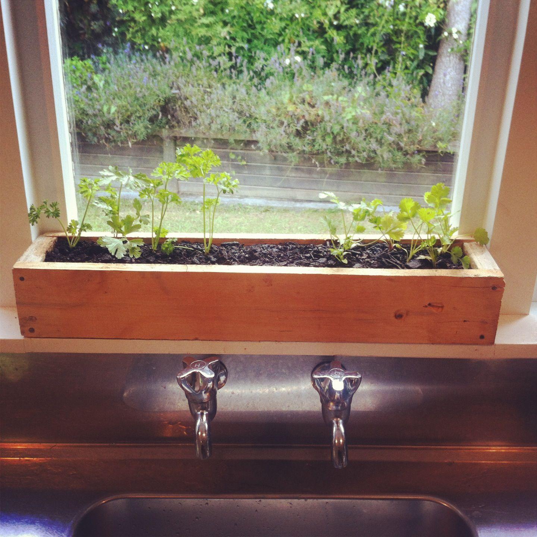 Herb garden for kitchen indoor herb garden pinterest for Kitchen herb garden