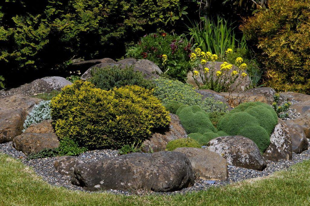 Rock Garden Garden Ideas Pinterest