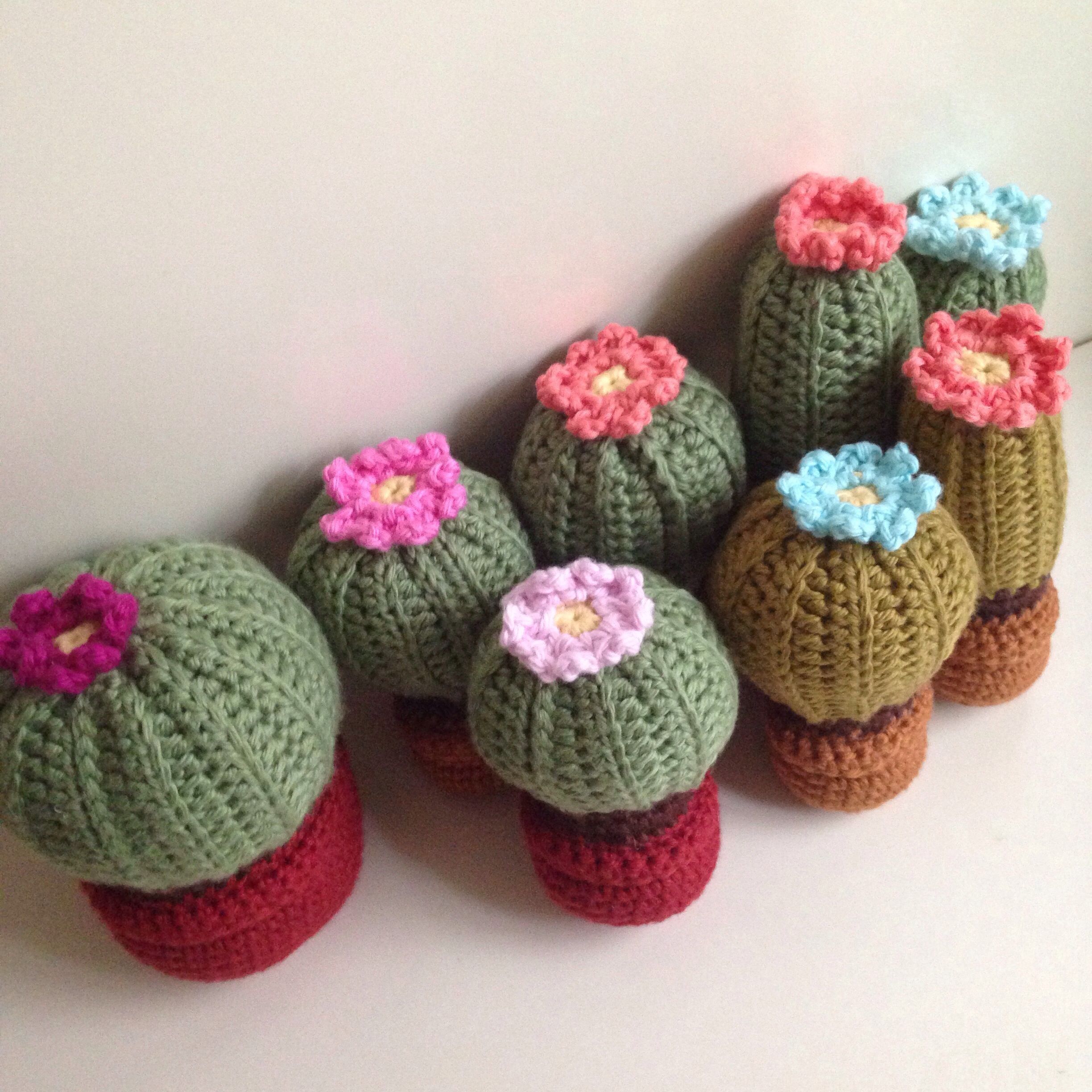 Free Crochet Pattern For Cactus : Crochet cactus crochet Pinterest