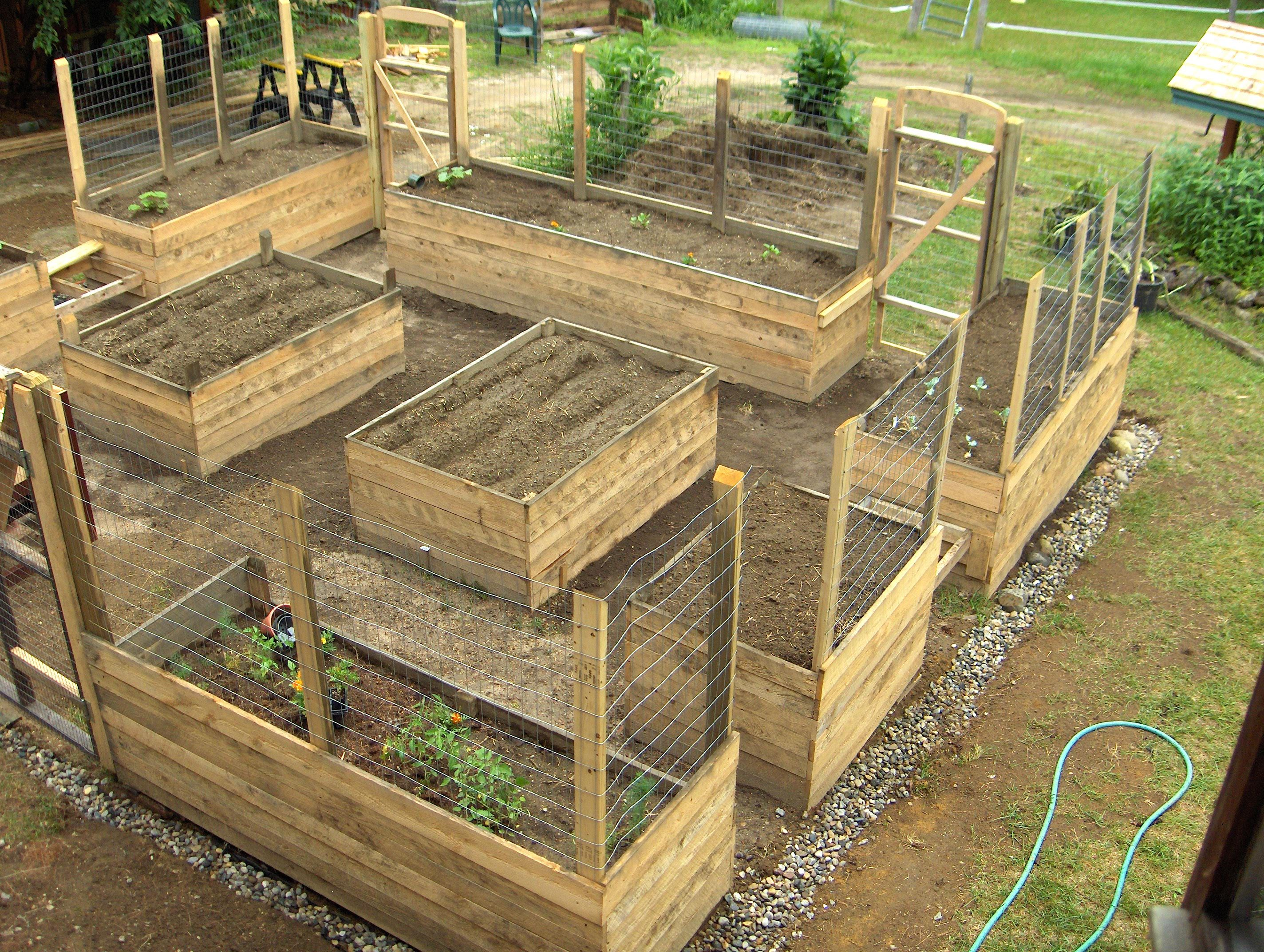 Self Contained Deer Proof Raised Bed Garden under ...