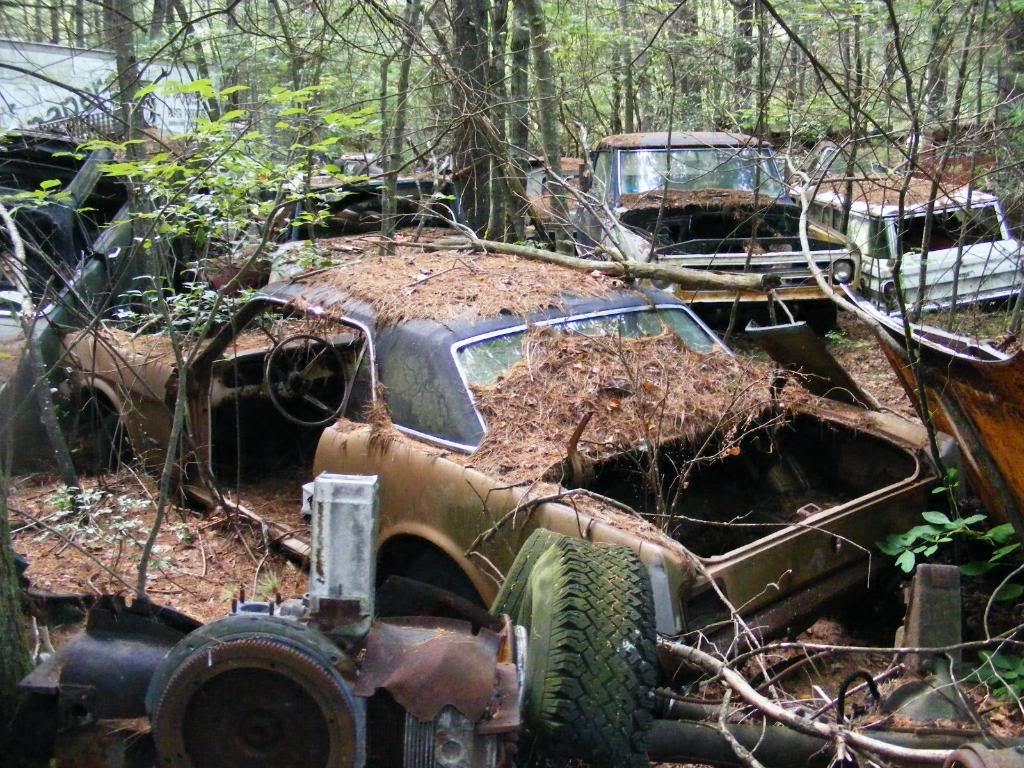 Mustang | Junkyard cars & trucks | Pinterest
