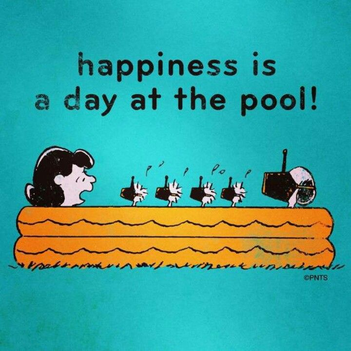 Swimming Pools Funny Quotes Quotesgram
