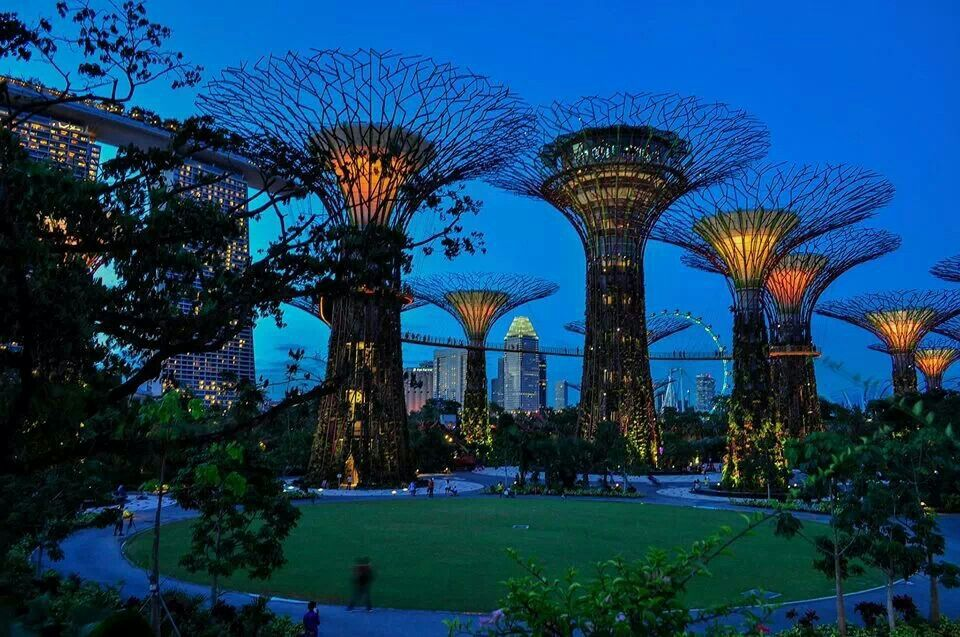 garden by the sea singapore greenscape pinterest
