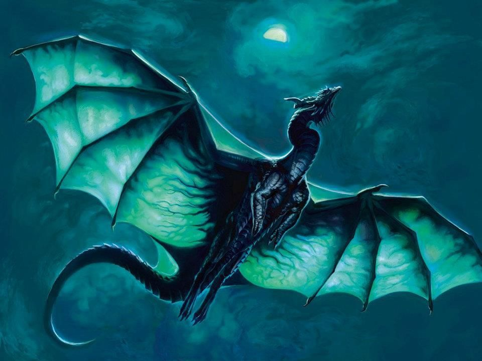 Blue Dragon on a night flight   Art Gallery   Pinterest