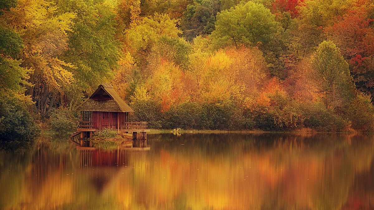 awesome bright autumn scenery - photo #7