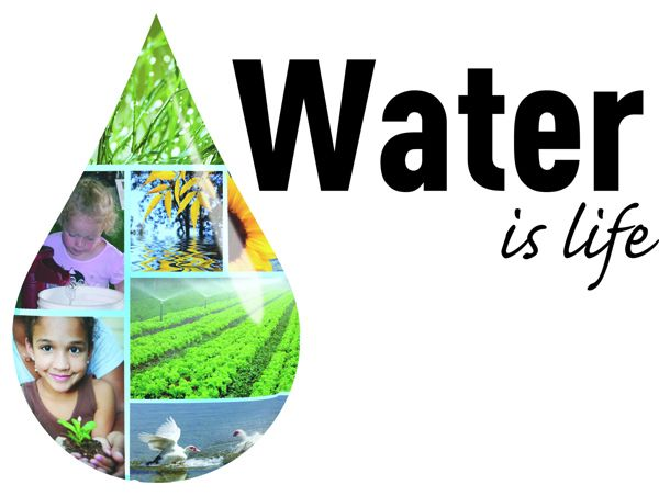 importance of water in hindi essays Water also plays a significant role in the process of photosynthesis essay on water by lauren bradshaw april 30  research papers, thesis papers, essays.