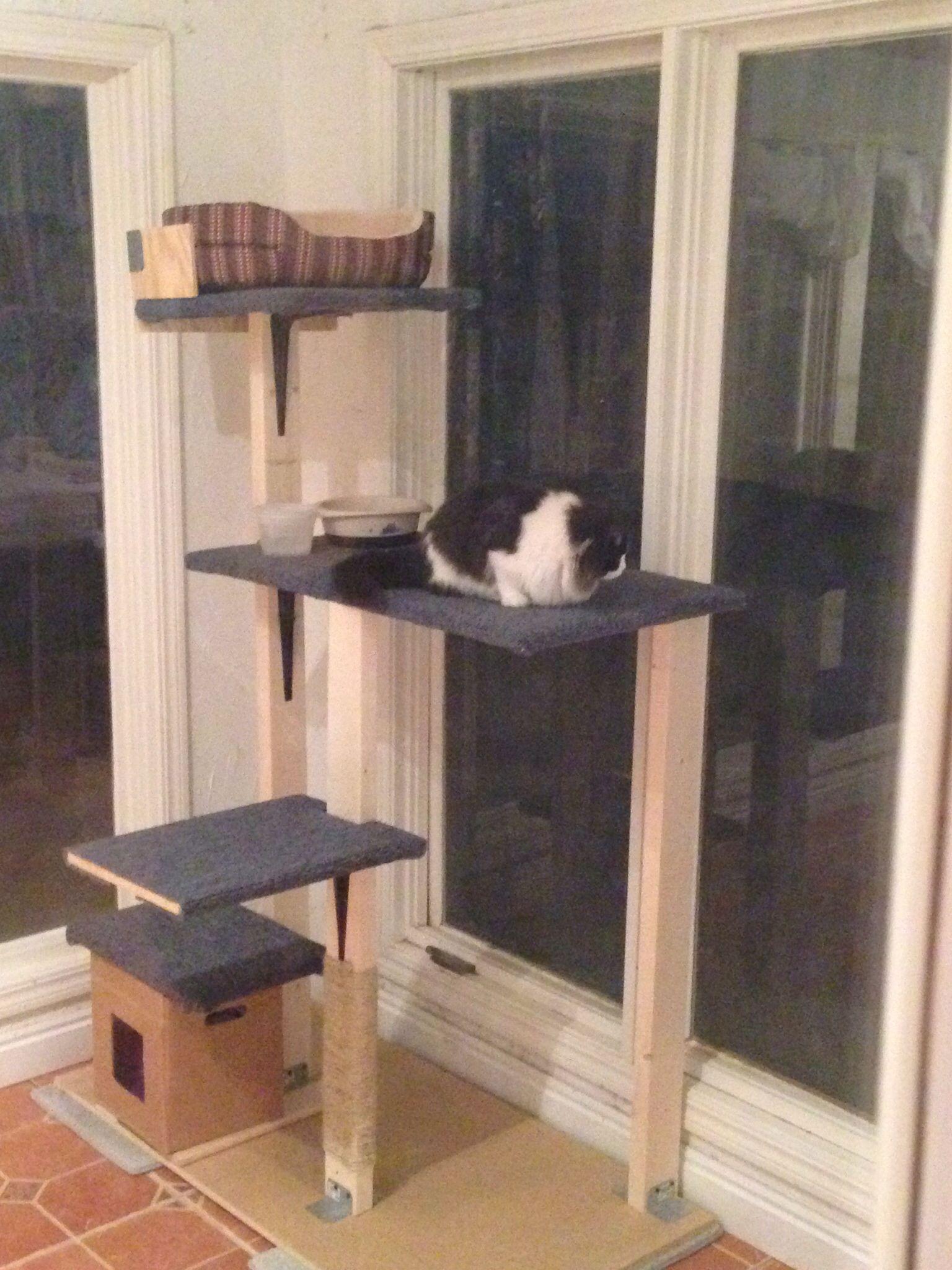 Cat tower diy diy pinterest for Homemade cat tower