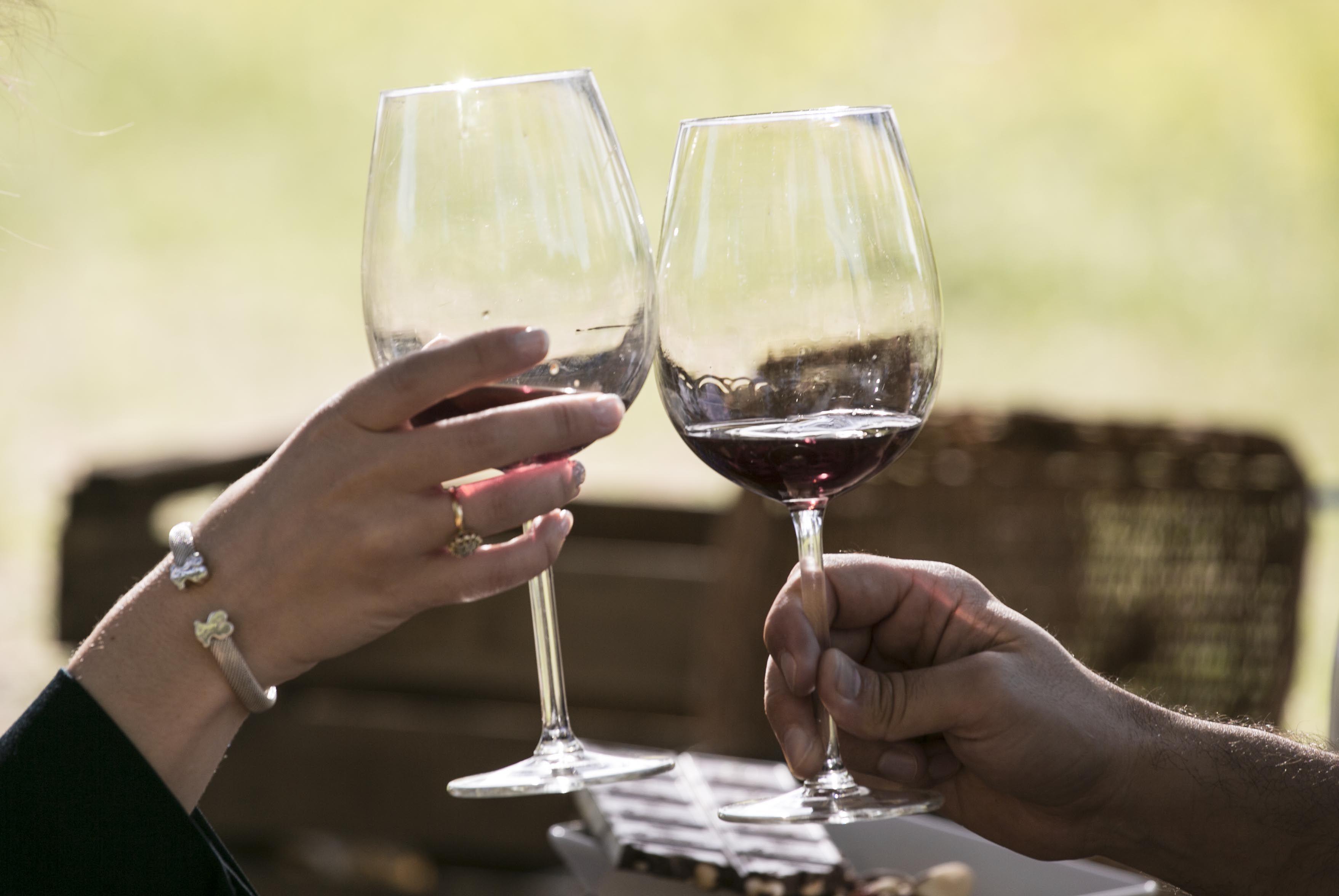 copas chocando en un brindis por la boda en Aranjuez de los novios