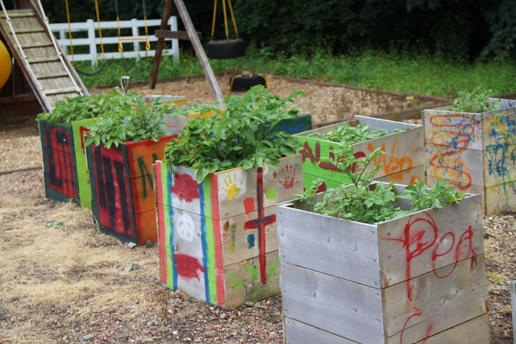 kids garden diy projects pinterest