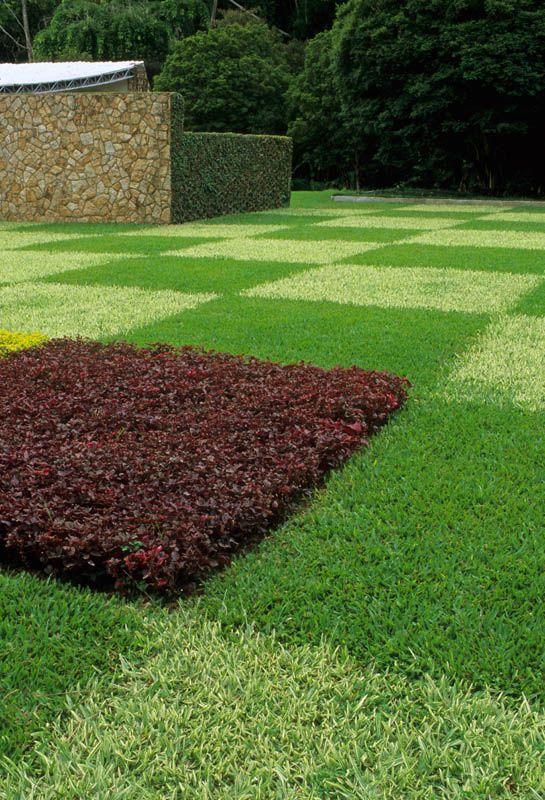 Lawn alternative in checkerboard motif landscape pinterest for Checkerboard garden designs
