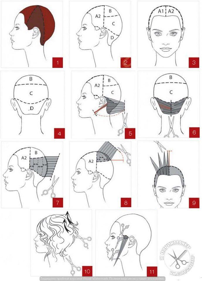 окраски схема волос