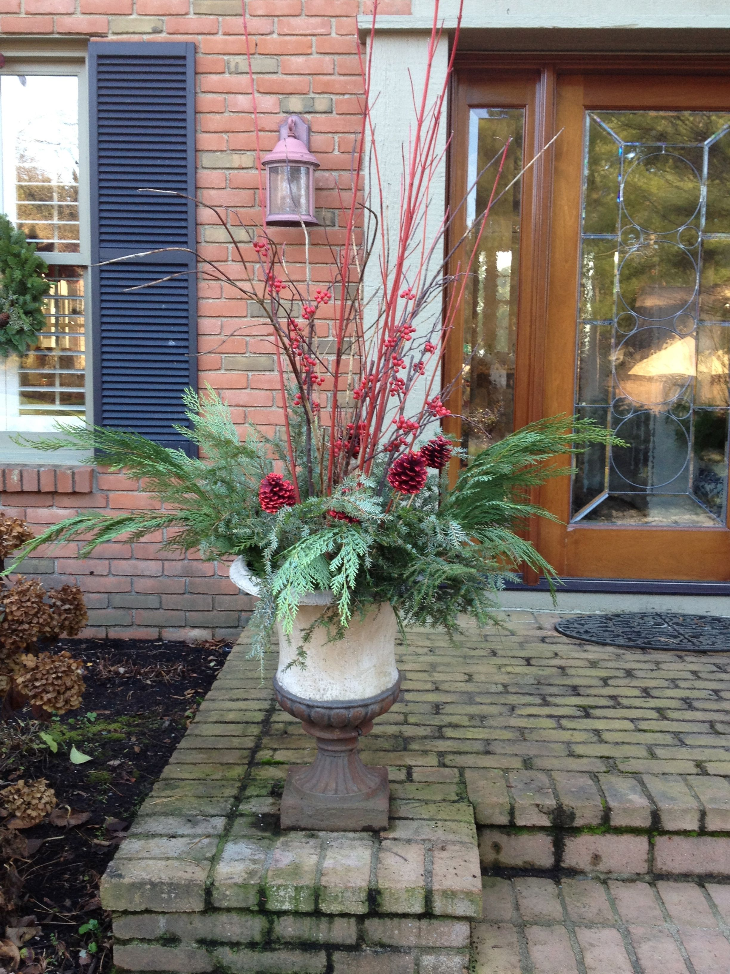 Winter Container Gardening For growing Pinterest