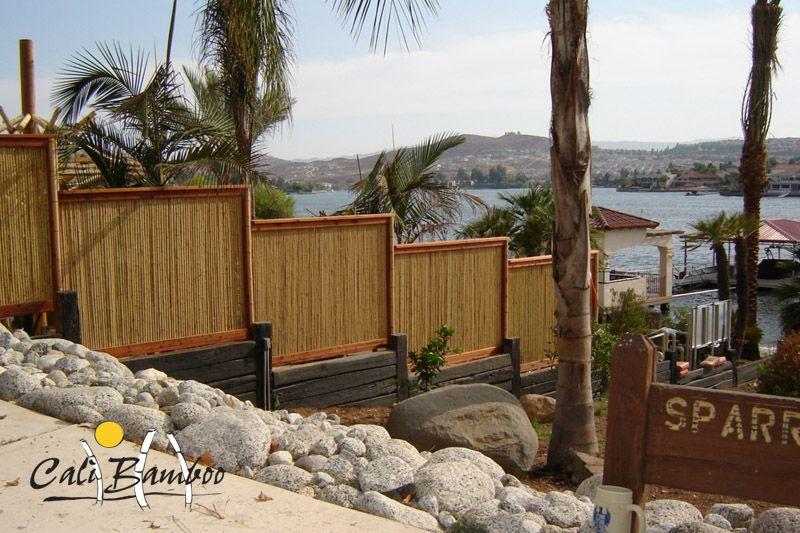 bamboo fence Garden Ideas Pinterest