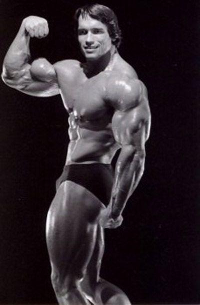Arnold | Arnold Schwar...
