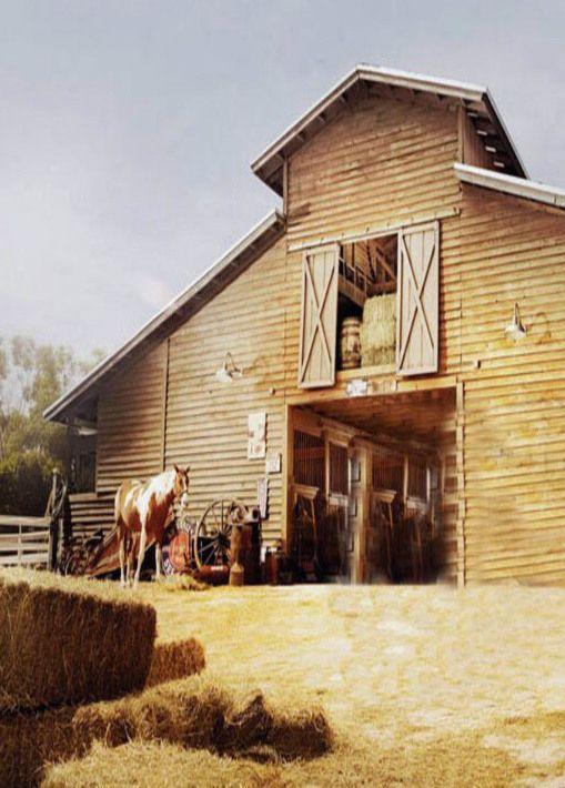 Blonde barn with hay mow doors opened barns pinterest for Barn loft doors